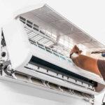 Dịch vụ tháo lắp vệ sinh máy lạnh uy tín